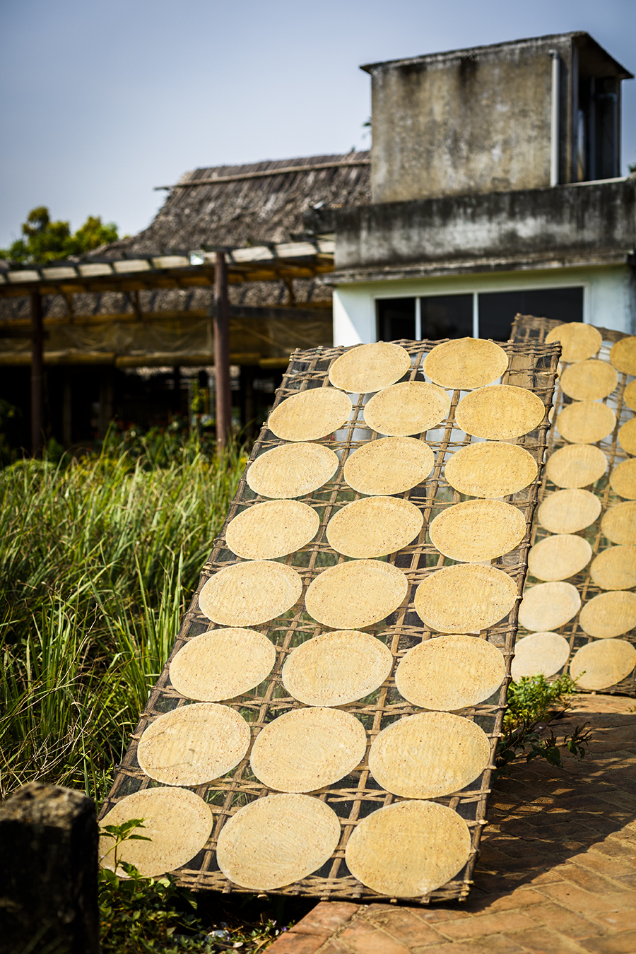 Rice sheets drying in the sun in Hoi An Vietnam